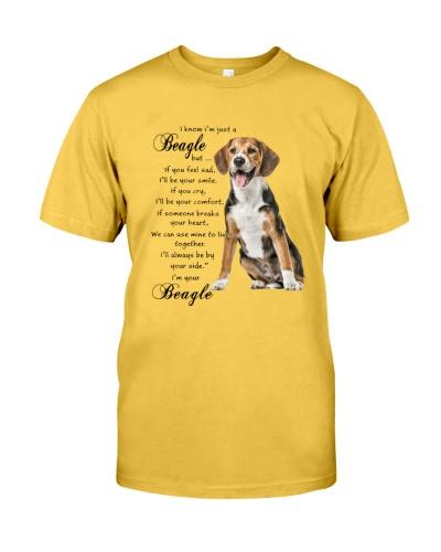 Beagle together
