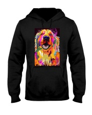 Golden Retriever Water Color Art J2 Hooded Sweatshirt thumbnail