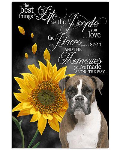 Boxer sunflower