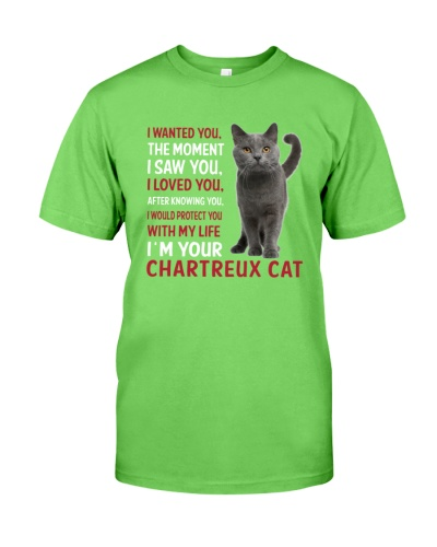 Chartreux Cat Wanted