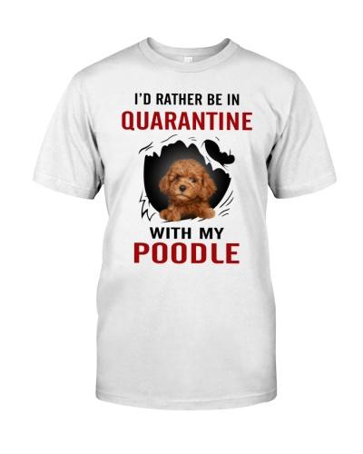 Poodle Quarantine