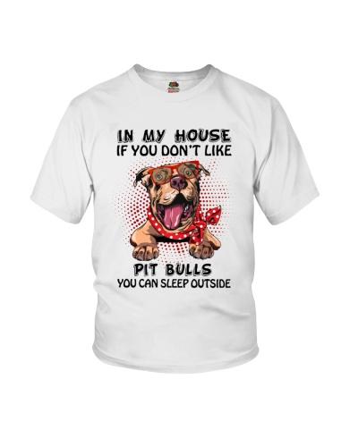 Pitbull You Can sleep outside
