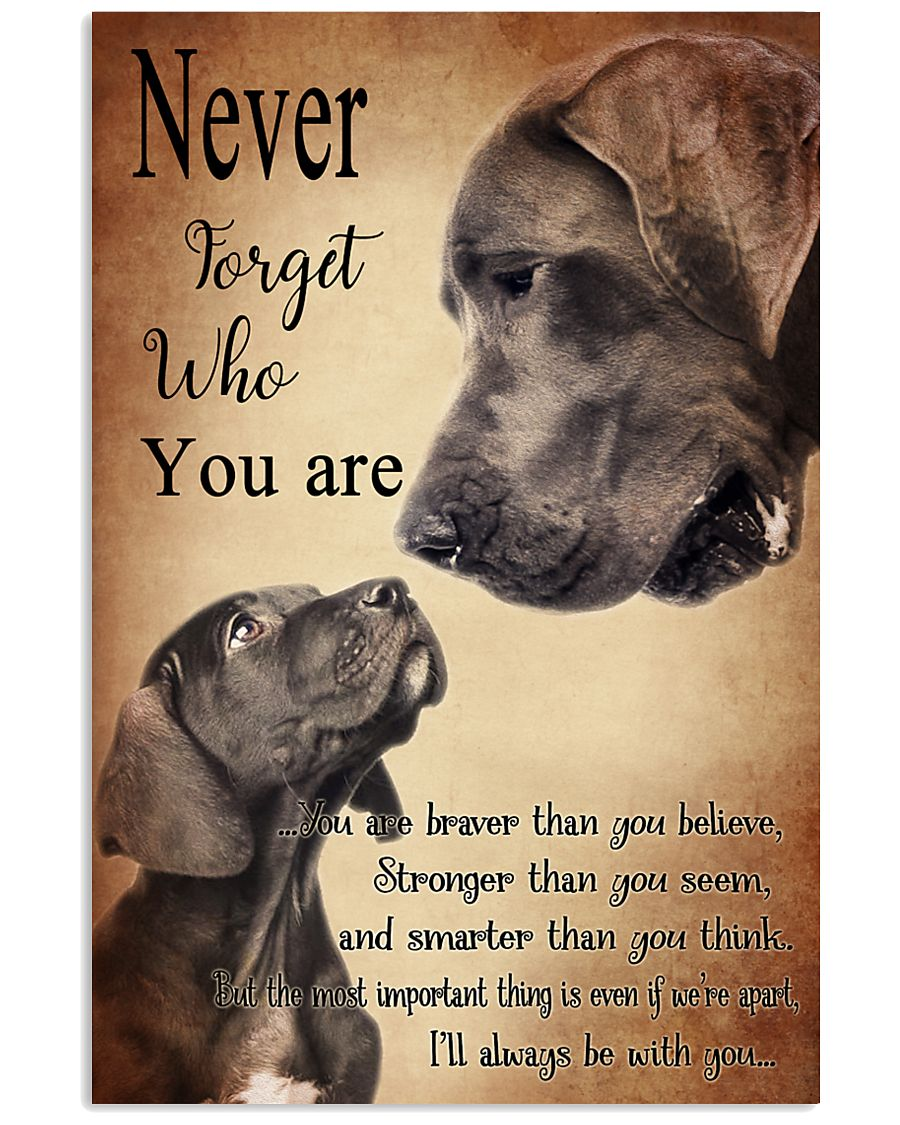 GREAT DANE NEVER 11x17 Poster