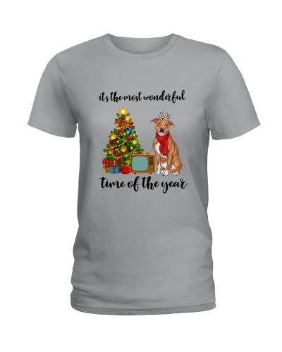 Pitbull christmas