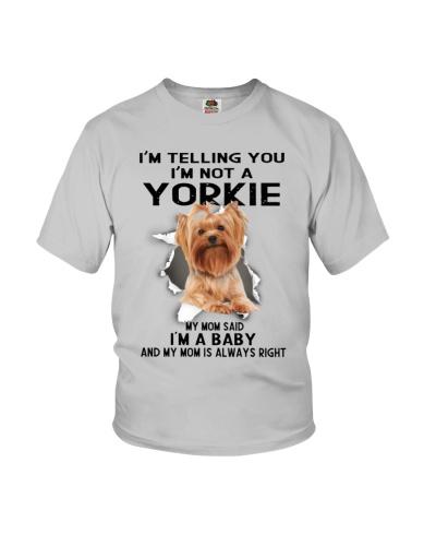 Yorkie I Am Baby