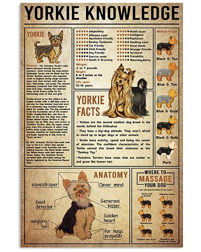 Yorkie Knowledge