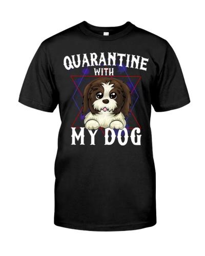 Shih tzu quarantine with my dog