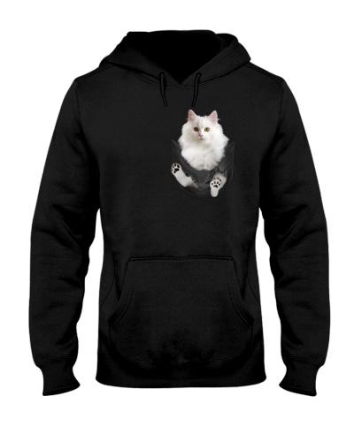 Persian cat pocket