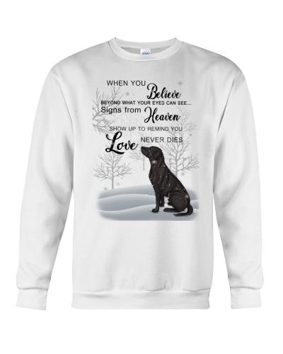 Labrador love never dies