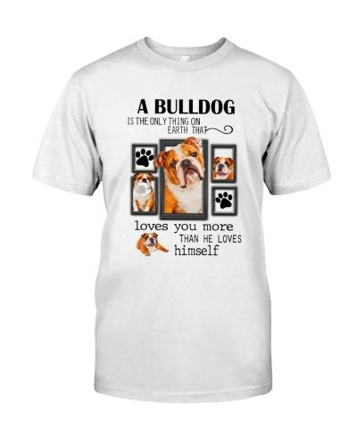Bulldog Love You More Than He Loves Himself