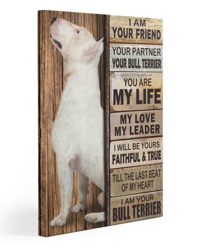 Bull Terrier Partner