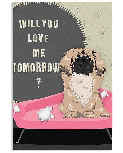 Pekingese Will you love me tomorrow