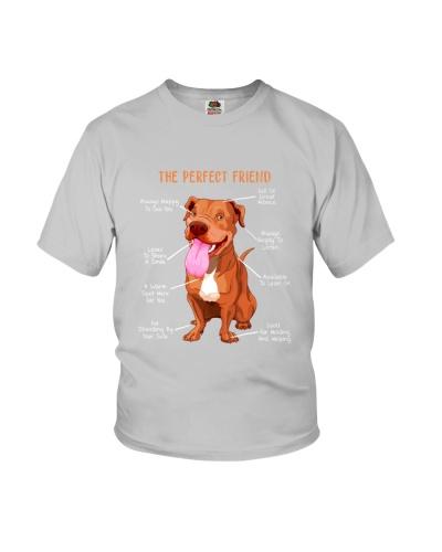 Pitbull The Perfect Friend