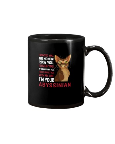 Abyssinian Wanted