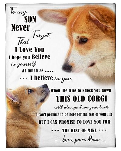 corgi to my son