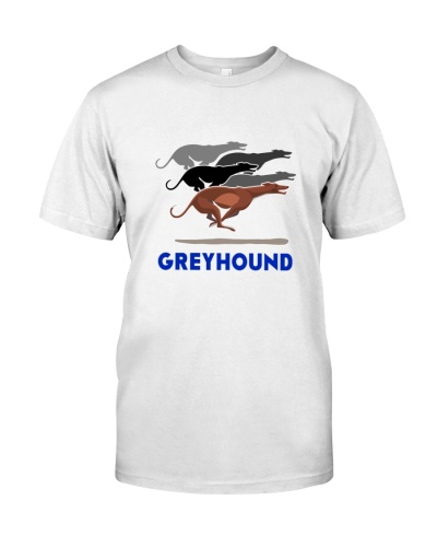 GREYHOUND RACE