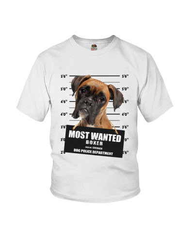 Boxer Wanted