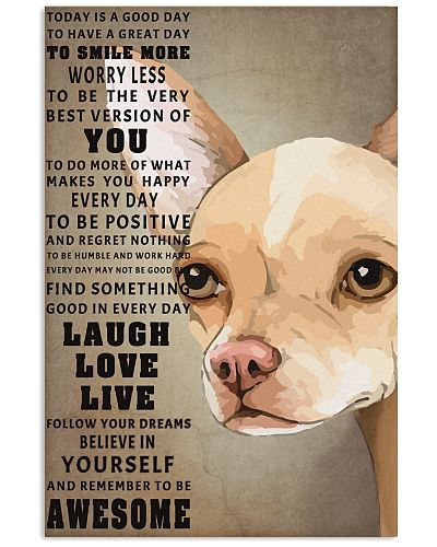 Chihuahua to be awesome