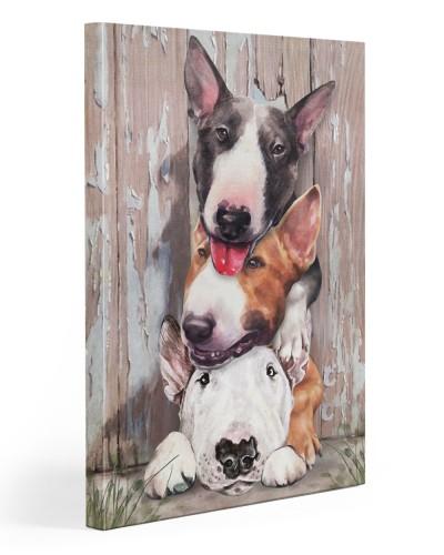 Bull Terrier Friend