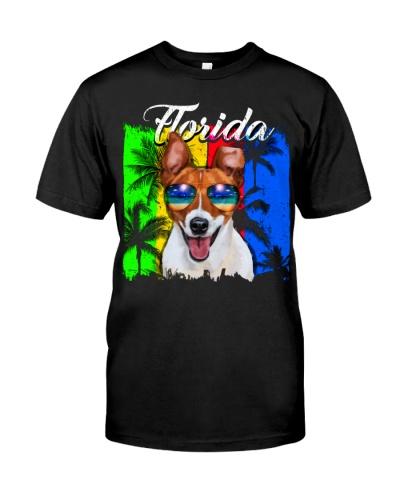 Jack Russell Florida