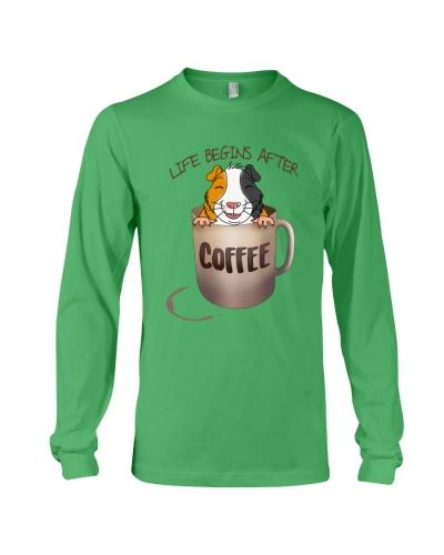 Guinea pig coffee