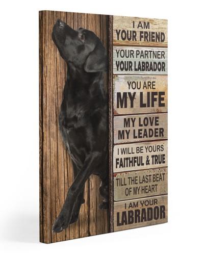 Labrador Partner