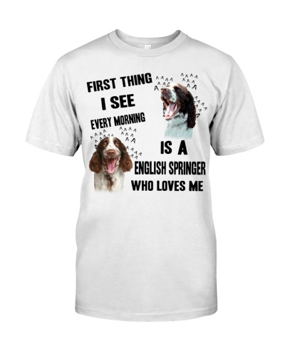 English springer First thing I see every morning