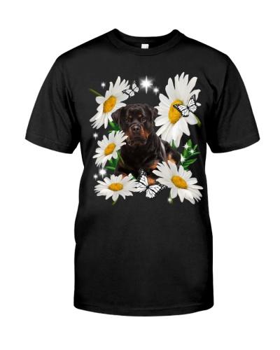 Rottweiler Daisy