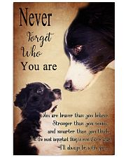 Border Collie-Never Forget- 11x17 Poster front