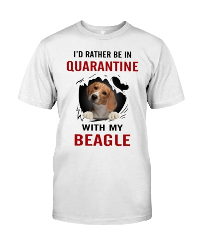 Beagle Quarantine