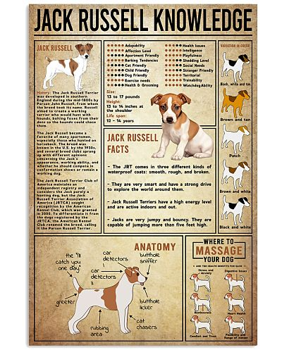 Jack Russell Knowledge