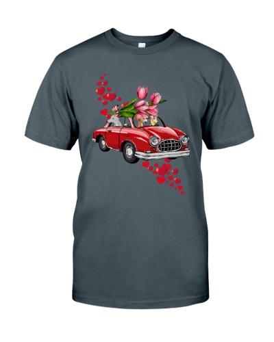 Greyhound Red Car