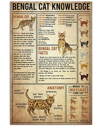 Bengal Cat Knowledge