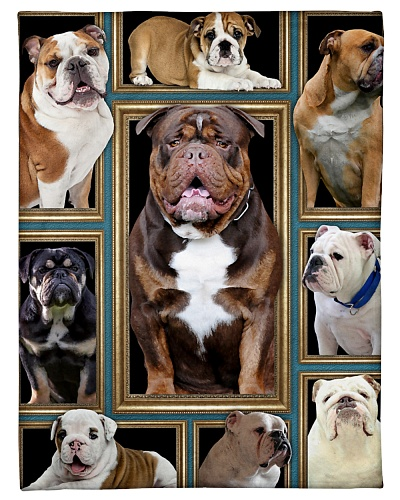 bulldog picture