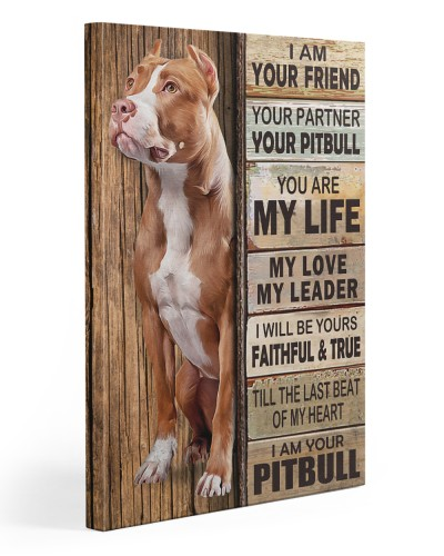 Pitbull Partner