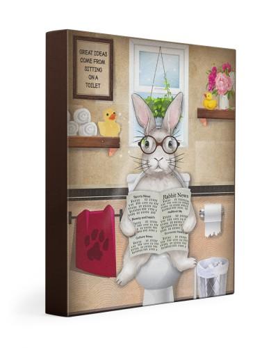 Rabbit toilet
