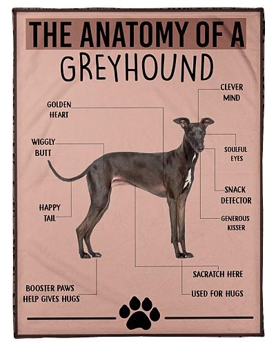 greyhound Anatomy