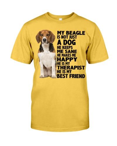 Beagle Friend
