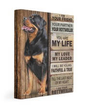 Rottweiler Partner Gallery Wrapped Canvas Prints tile