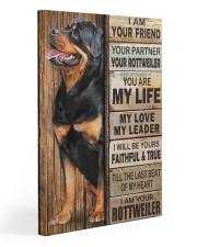 Rottweiler Partner 20x30 Gallery Wrapped Canvas Prints front