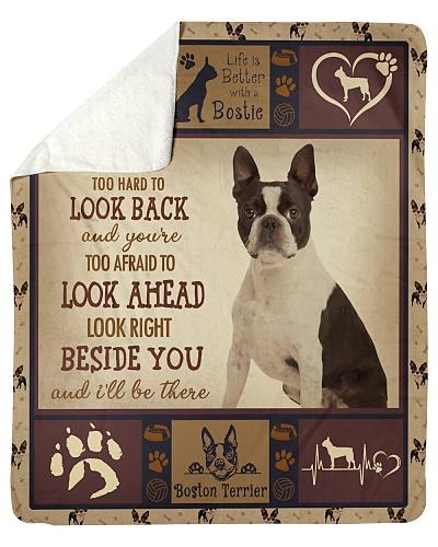 Beside You Boston Terrier Dog
