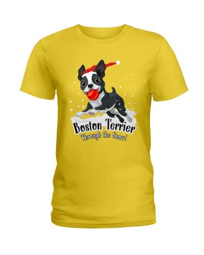 Bonton Terrier Snow