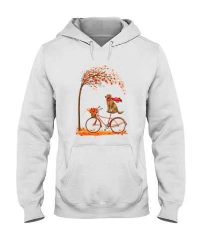 Golden Retriever Autumn Bicycle
