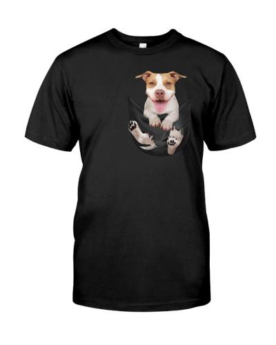 pitbull pocket