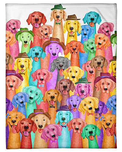 Golden Retriever Multi