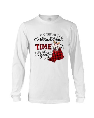 Labrador Christmas time