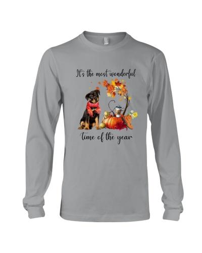 Rottweiler Wonderful