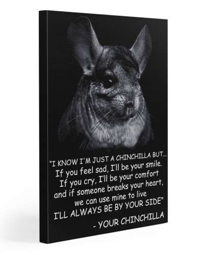 Chinchila Know