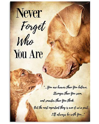 Pitbull Never Forget