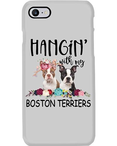 Boston Terrier Hanging